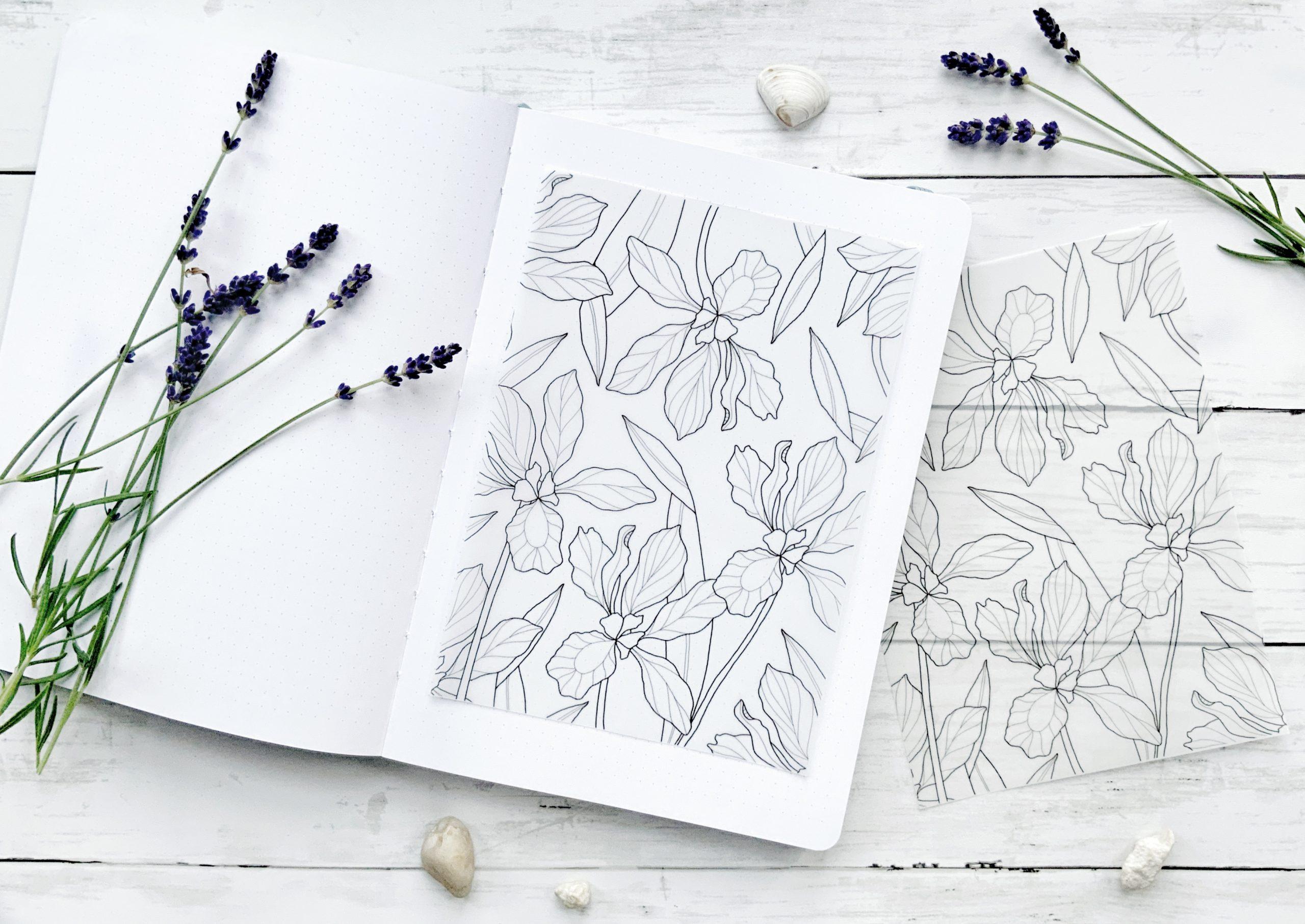 Iris Vellum Paper